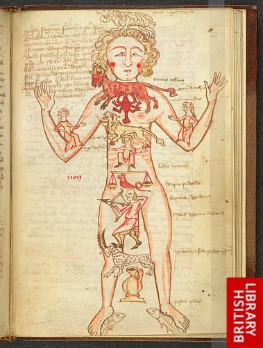 book essay manuscript medicine medieval source Read and learn for free about the following article: medieval manuscripts.