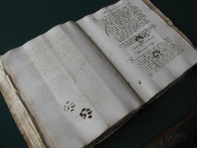 Cat paws in a fifteenth-century manuscript (photo taken at the Dubrovnik archives by @EmirOFilipovic)