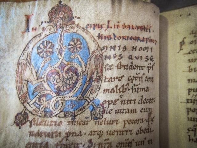 Leiden University Library BPL 193, initial detail.