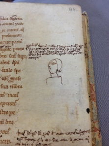 Leiden, Universiteitsbibliotheek, MS 144 (12th c): annotations added in 13th century