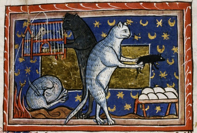 This is in fact my computer desktop image.  Bodleian Library, MS. Bodley 764, f. 51r