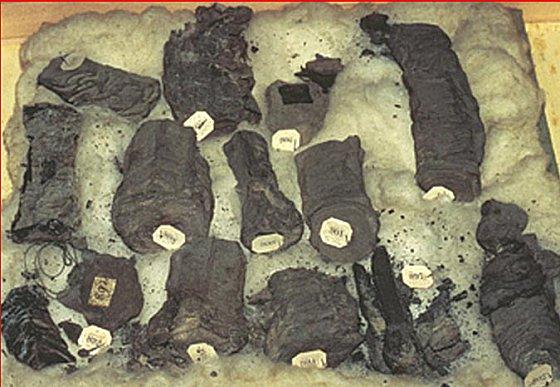 Carbonized papyri scrolls from Herculaneum