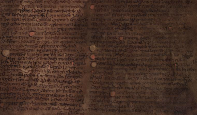 Detail of TCD MS 1339, p. 309. This page of the Book of Leinster contains a fragment of the earliest surviving copy of Cogad Gáedel re Gallaib.