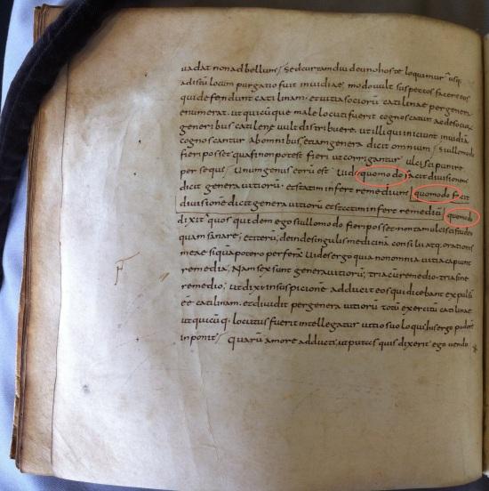 Leiden UB, VLQ 130, the Scholiasta Gronovianus, f. 21v
