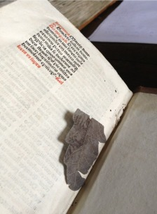Leaf bookmark found by Erik Kwakkel in an incunabula in Zutphen's chained library. Photo Erik Kwakkel.
